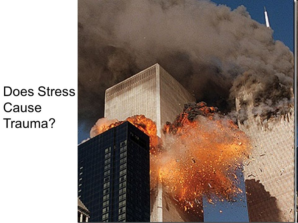 Does Stress Cause Trauma