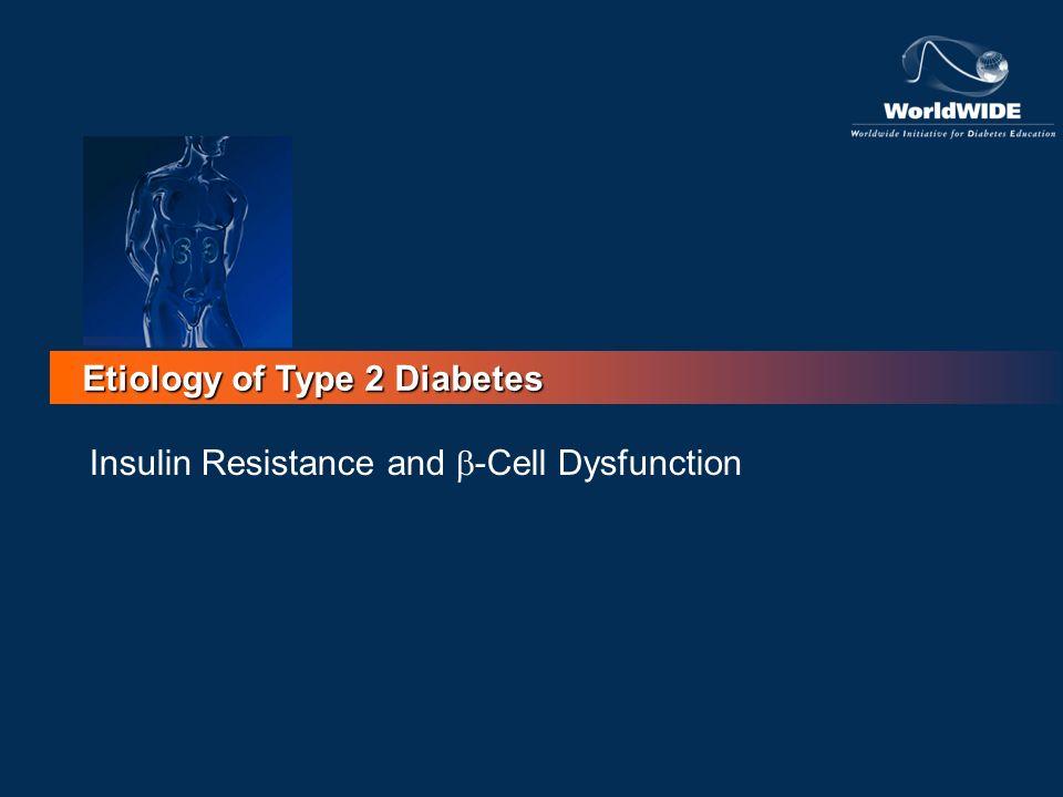 Etiology of Type 2 Diabetes