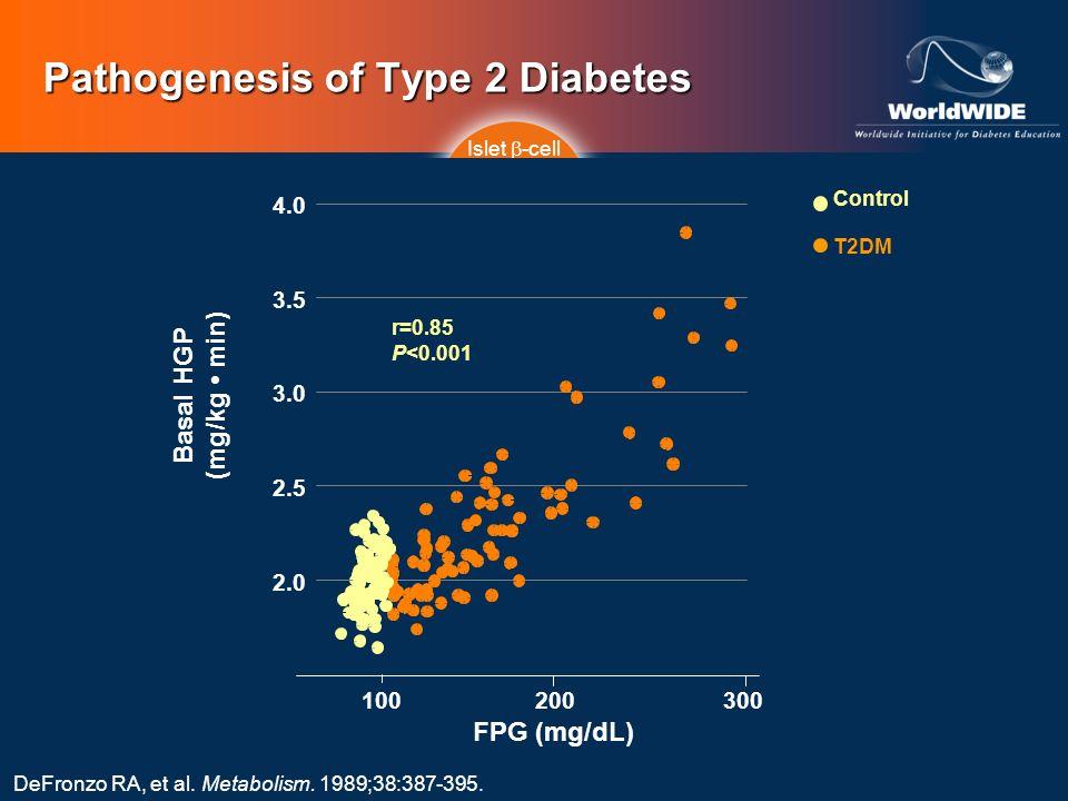 Pathogenesis of Type 2 Diabetes