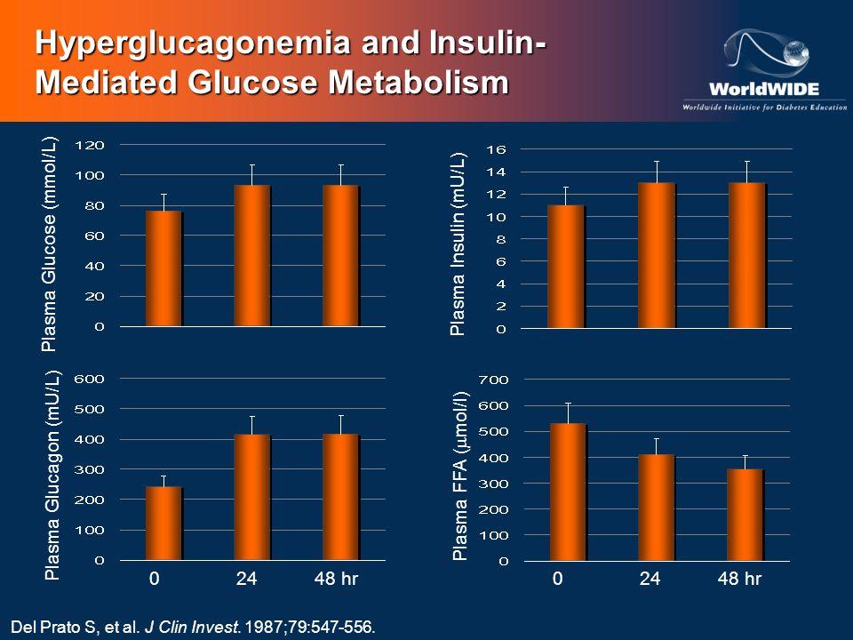 Hyperglucagonemia and Insulin- Mediated Glucose Metabolism