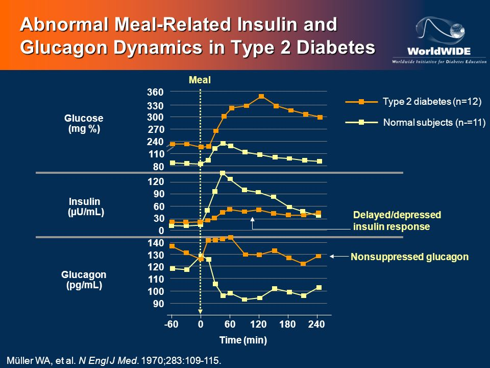 Abnormal Meal-Related Insulin and Glucagon Dynamics in Type 2 Diabetes