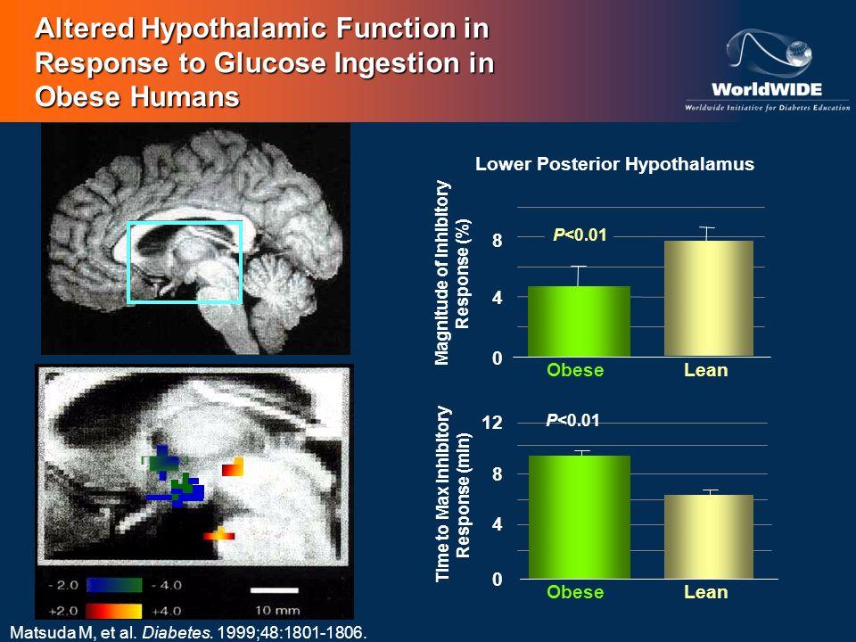 Lower Posterior Hypothalamus Magnitude of Inhibitory