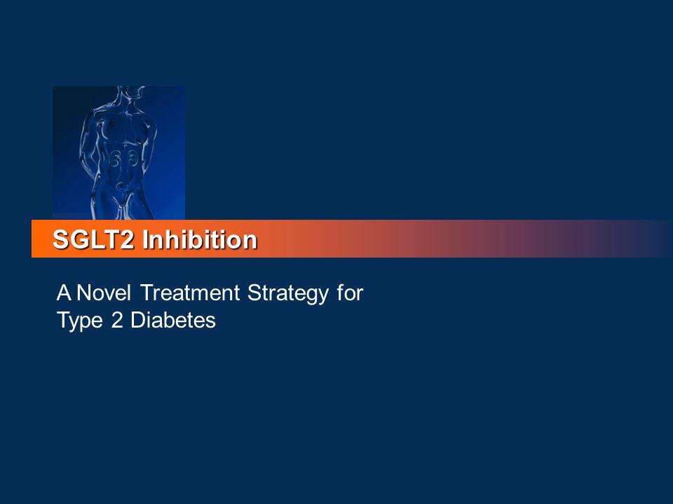 SGLT2 Inhibition A Novel Treatment Strategy for Type 2 Diabetes 73