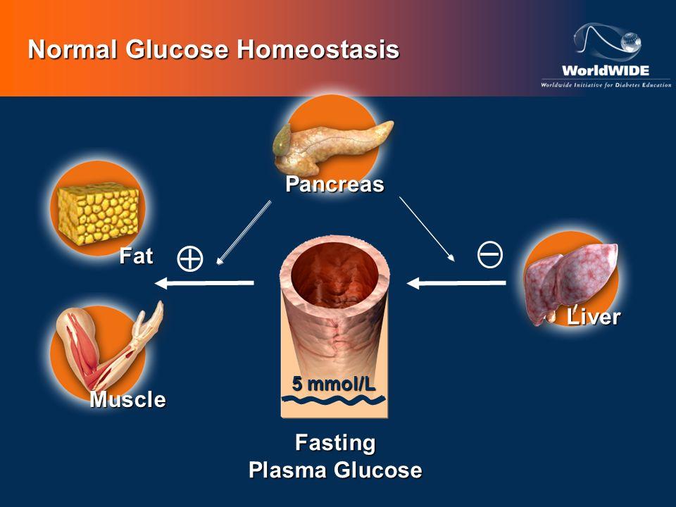 Normal Glucose Homeostasis