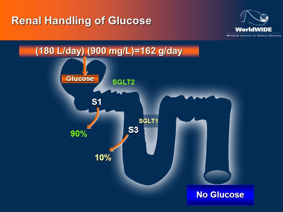 Renal Handling of Glucose