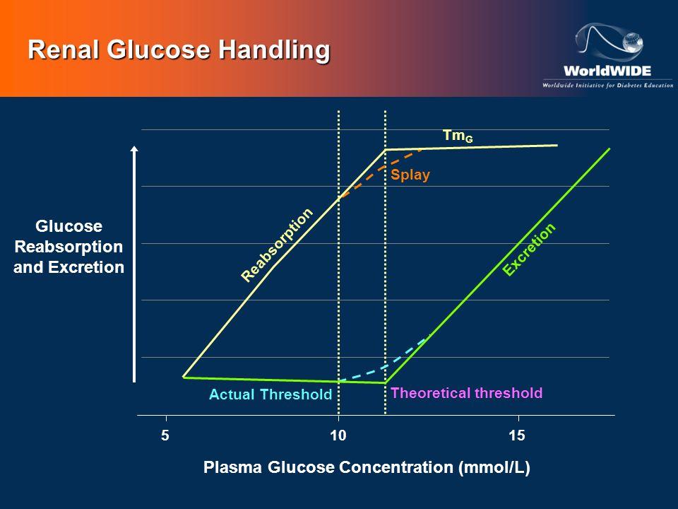 Renal Glucose Handling