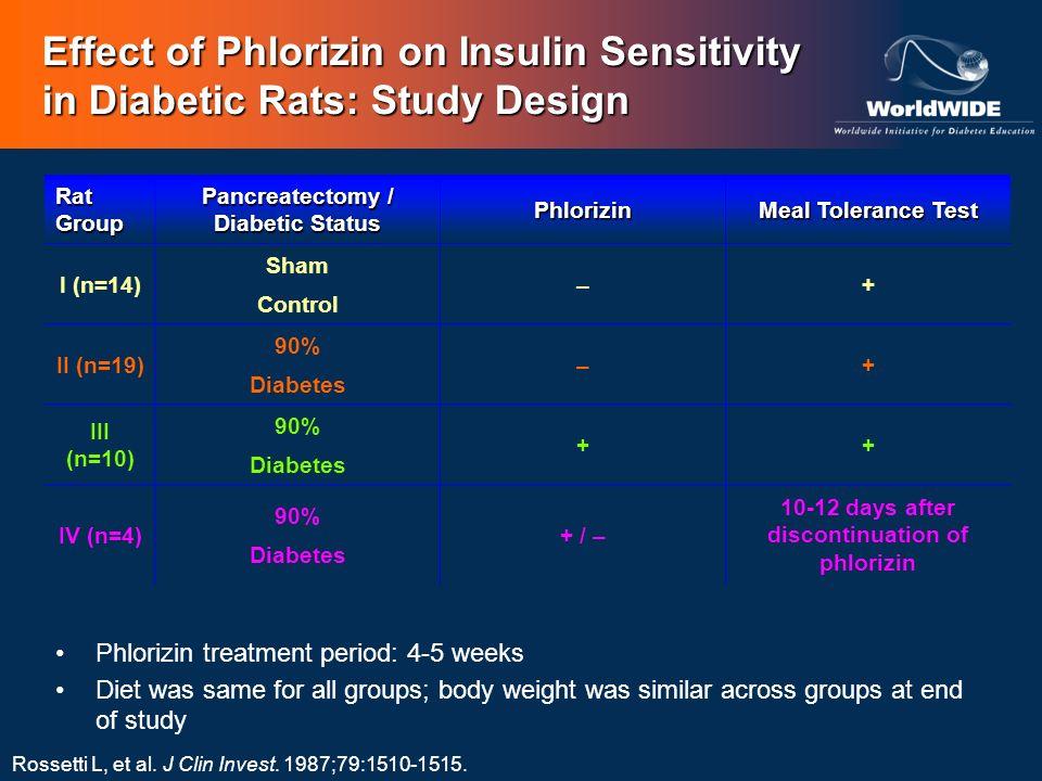 Effect of Phlorizin on Insulin Sensitivity in Diabetic Rats: Study Design
