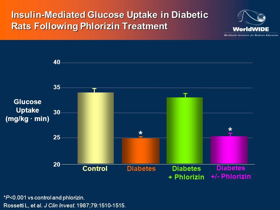 Diabetes +/- Phlorizin