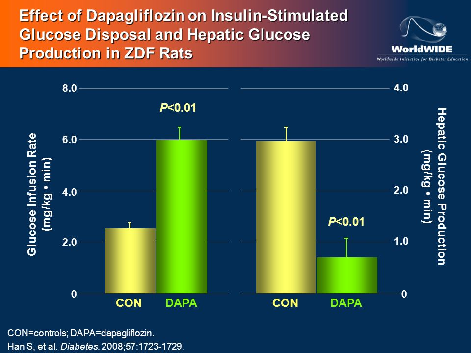 Effect of Dapagliflozin on Insulin-Stimulated Glucose Disposal and Hepatic Glucose Production in ZDF Rats