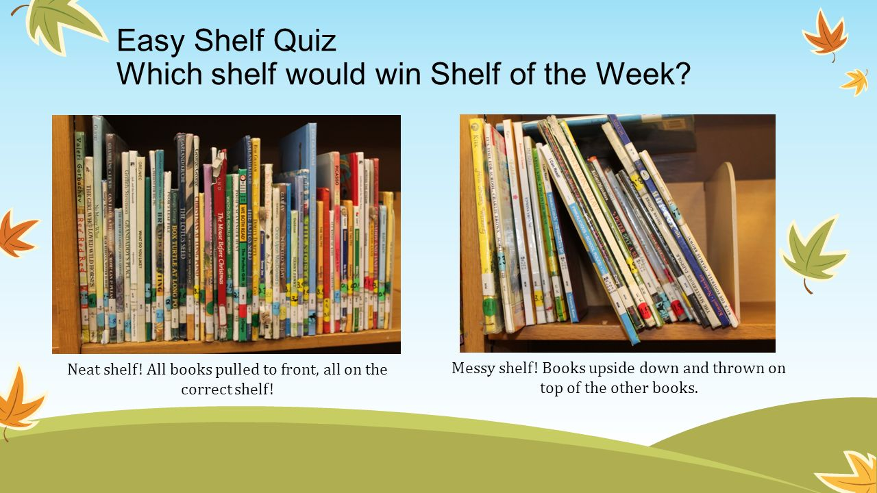Easy Shelf Quiz Which shelf would win Shelf of the Week