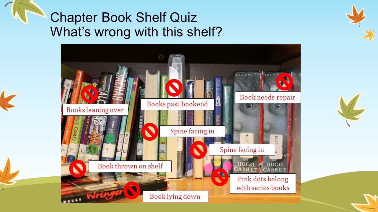 Chapter Book Shelf Quiz What's wrong with this shelf