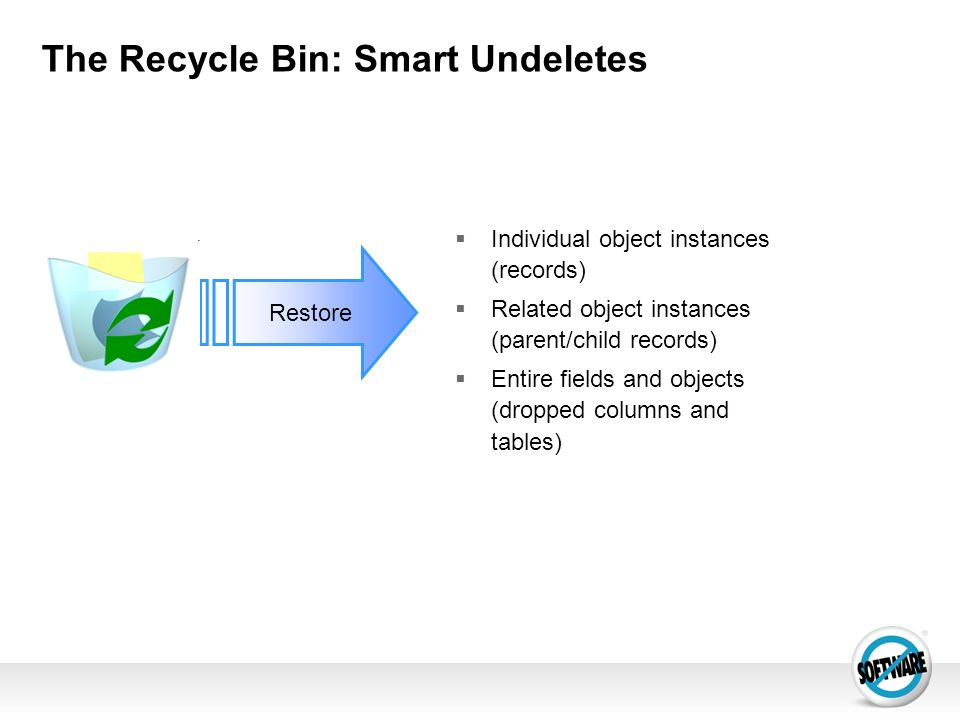 The Recycle Bin: Smart Undeletes