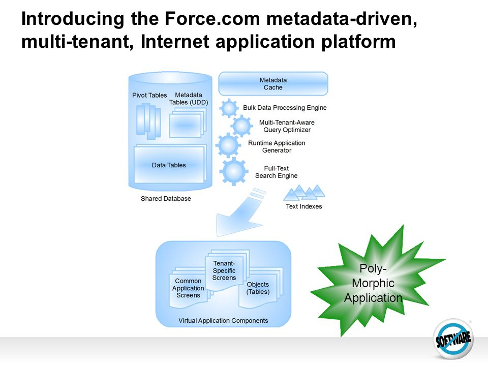 Introducing the Force.com metadata-driven, multi-tenant, Internet application platform