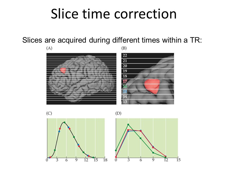 Slices are acquired during different times within a TR:
