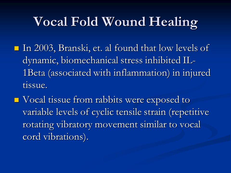 Vocal Fold Wound Healing