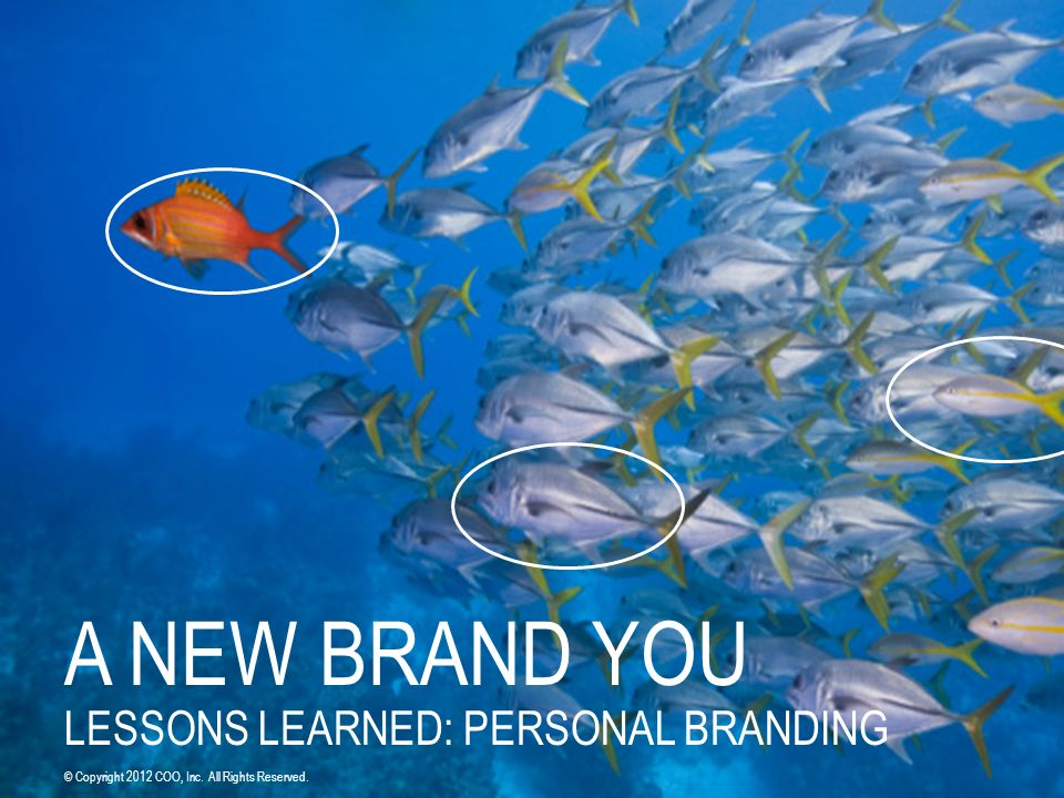 A NEW BRAND YOU LESSONS LEARNED: PERSONAL BRANDING