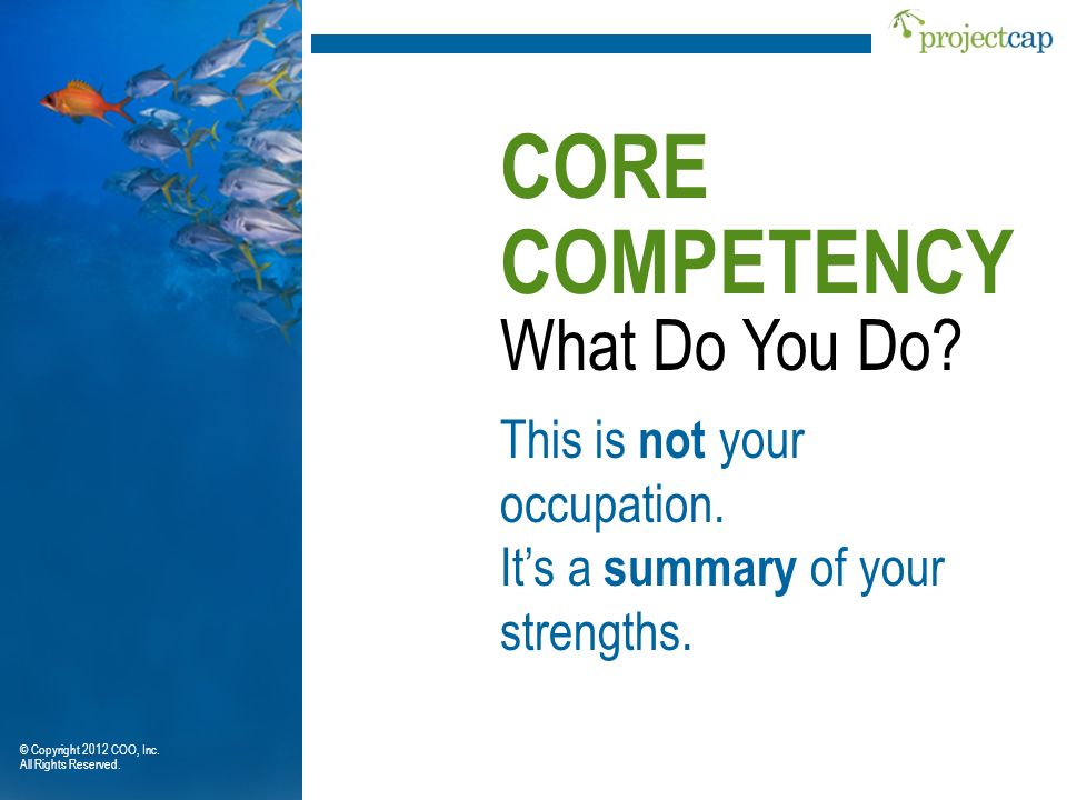 CORE COMPETENCY What Do You Do This is not your occupation.