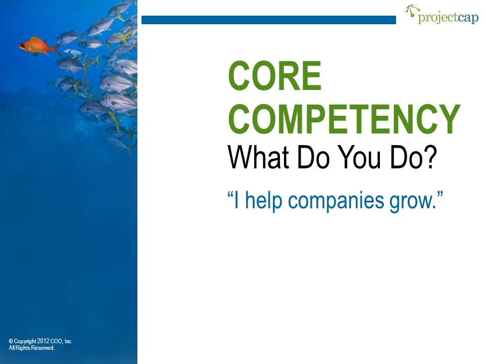 CORE COMPETENCY What Do You Do I help companies grow.