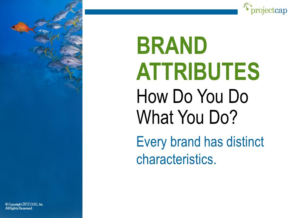 BRAND ATTRIBUTES How Do You Do What You Do