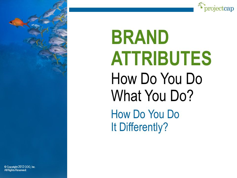 BRAND ATTRIBUTES How Do You Do What You Do How Do You Do