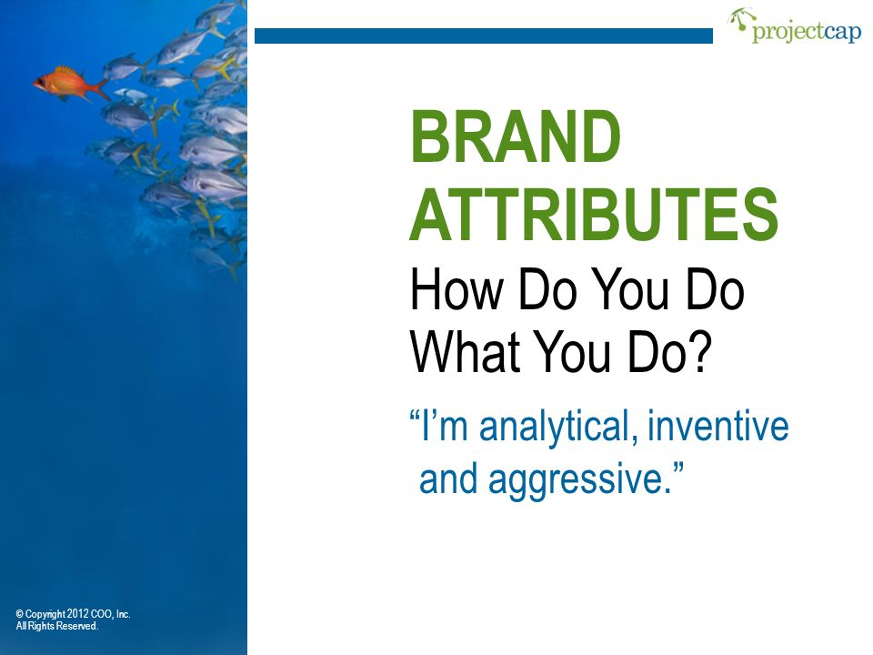 BRAND ATTRIBUTES How Do You Do What You Do I'm analytical, inventive