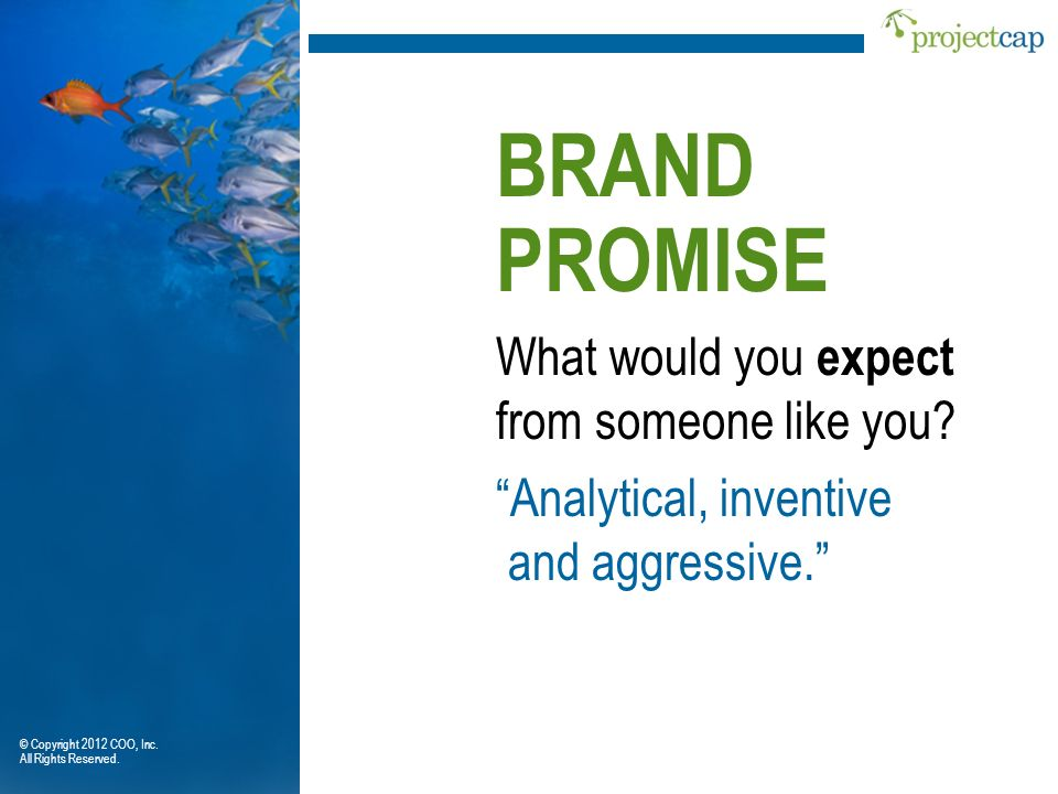 BRAND PROMISE What would you expect from someone like you
