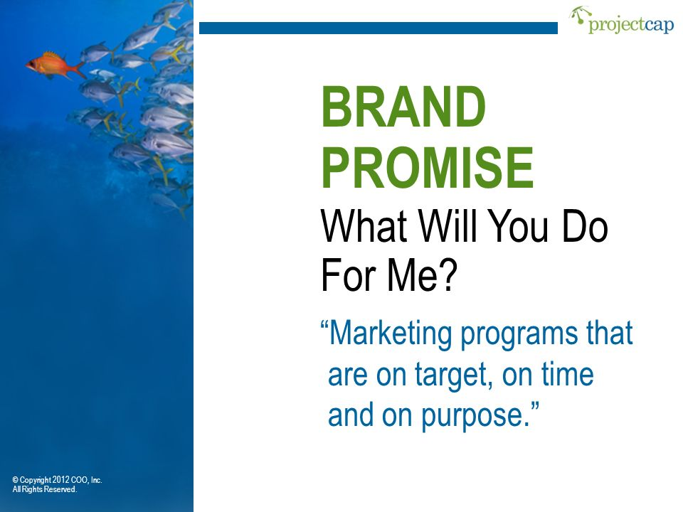 BRAND PROMISE What Will You Do For Me Marketing programs that