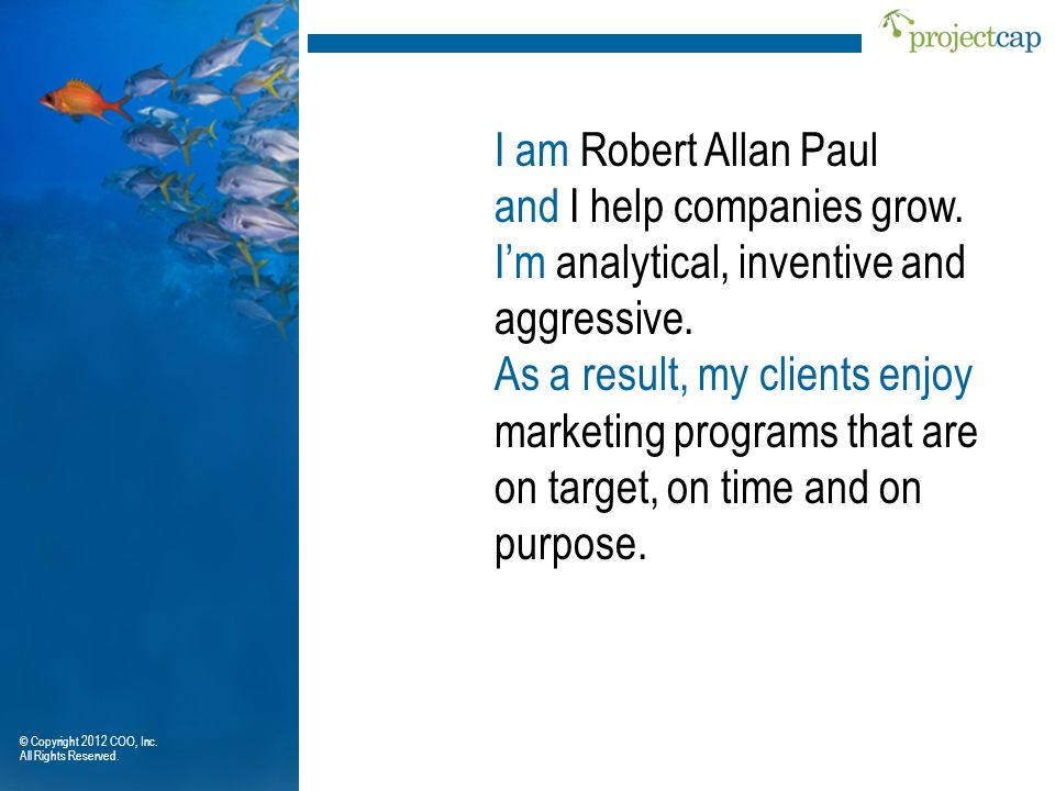 and I help companies grow. I'm analytical, inventive and aggressive.