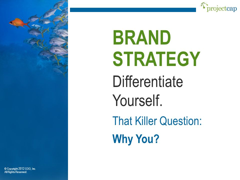 BRAND STRATEGY Differentiate Yourself. That Killer Question: Why You