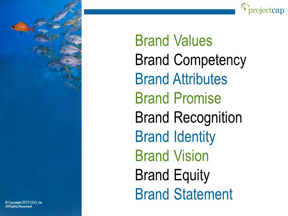 Brand Values Brand Competency Brand Attributes Brand Promise