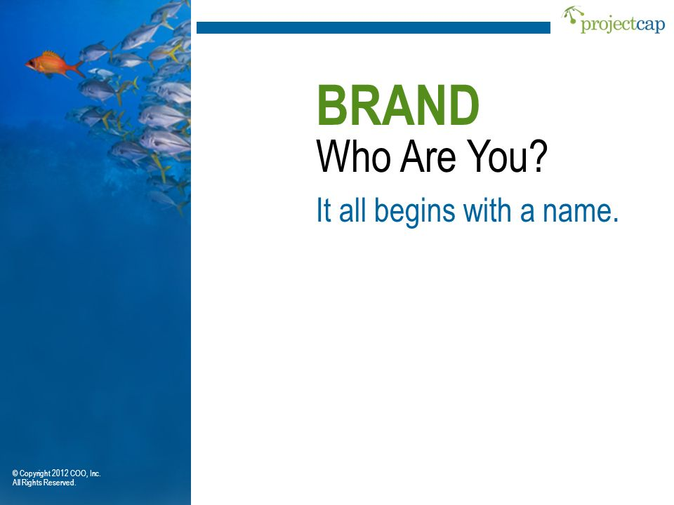 BRAND Who Are You It all begins with a name.
