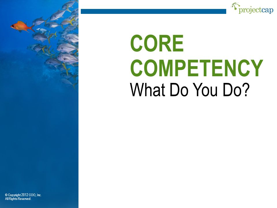 CORE COMPETENCY What Do You Do © Copyright 2012 COO, Inc.