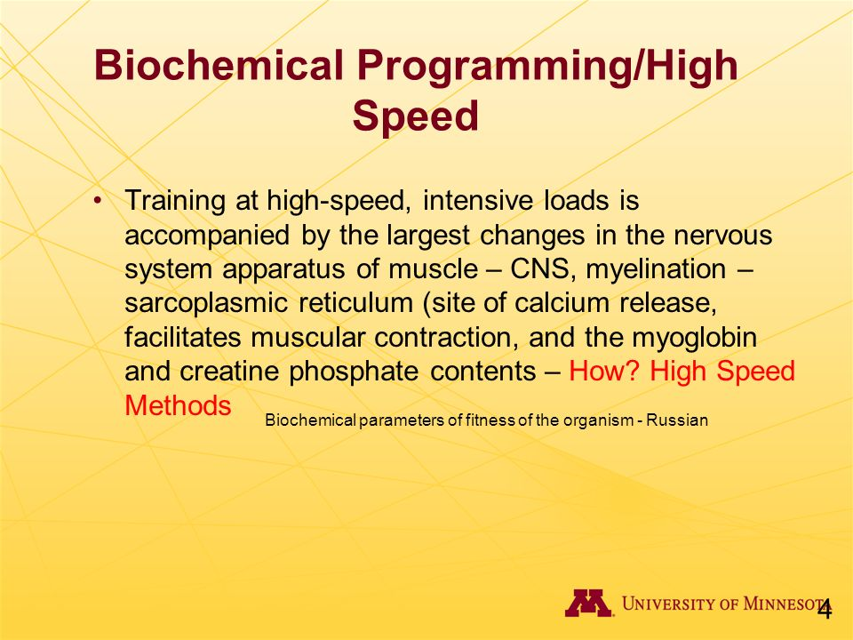 Biochemical Programming/High Speed