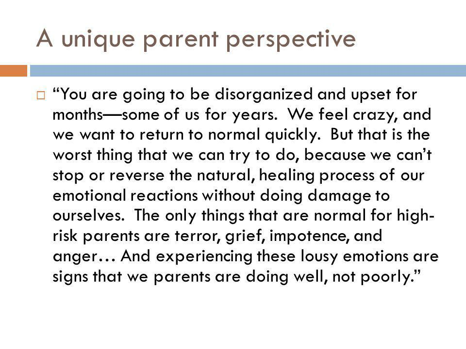 A unique parent perspective