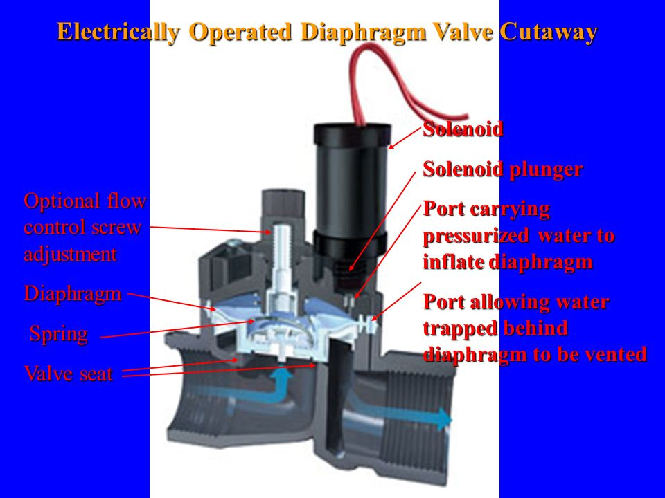 Electrically Operated Diaphragm Valve Cutaway