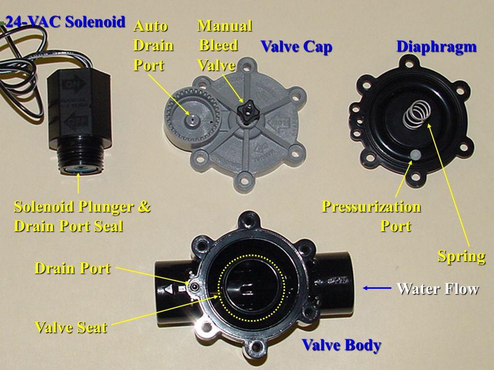 24-VAC Solenoid Auto Manual Drain Bleed Port Valve. Valve Cap Diaphragm.