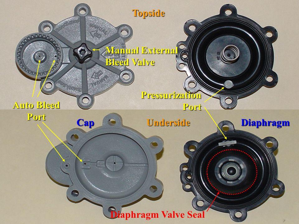 Cap Underside Diaphragm