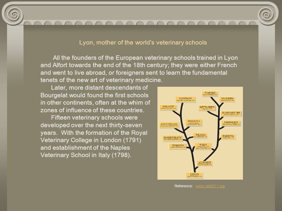 Lyon, mother of the world s veterinary schools All the founders of the European veterinary schools trained in Lyon and Alfort towards the end of the 18th century; they were either French and went to live abroad, or foreigners sent to learn the fundamental tenets of the new art of veterinary medicine.