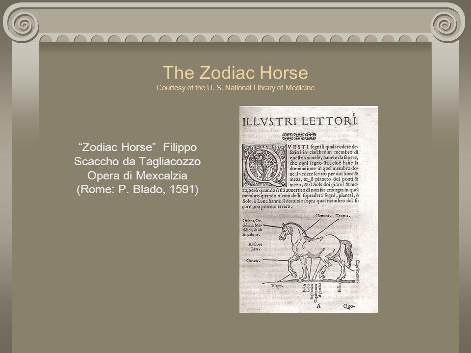 The Zodiac Horse Courtesy of the U. S. National Library of Medicine