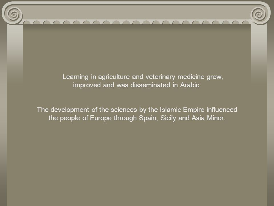 Learning in agriculture and veterinary medicine grew, improved and was disseminated in Arabic.