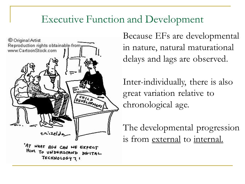 Executive Function and Development