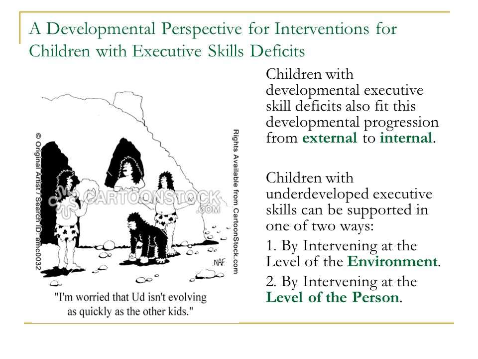 A Developmental Perspective for Interventions for Children with Executive Skills Deficits