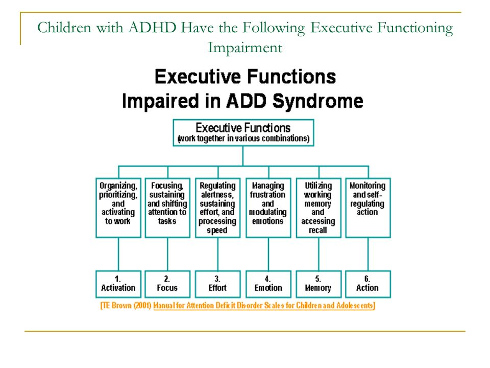 Children with ADHD Have the Following Executive Functioning Impairment