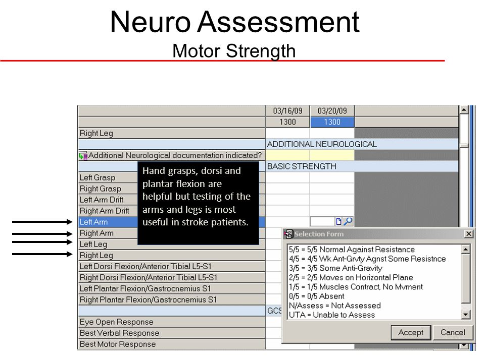 Neuro Assessment Motor Strength