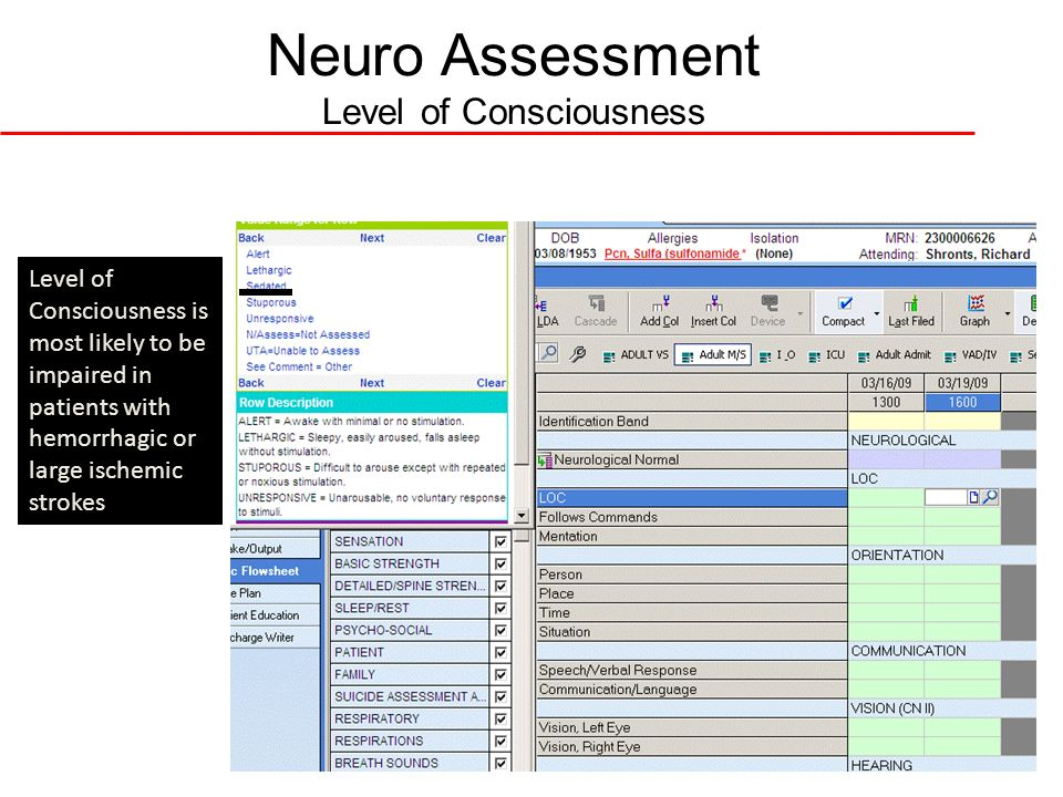 Neuro Assessment Level of Consciousness