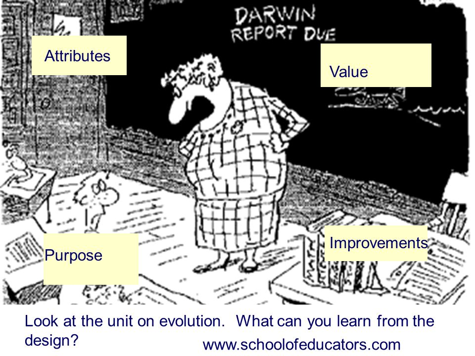 Attributes Purpose. Value. Improvements. Look at the unit on evolution. What can you learn from the design
