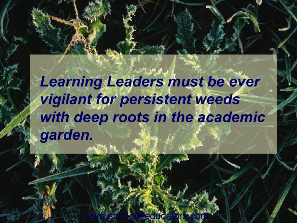 Learning Leaders must be ever vigilant for persistent weeds with deep roots in the academic garden.