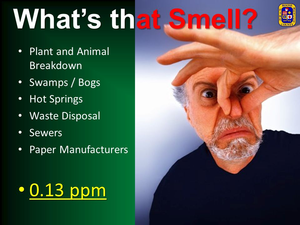 What's that Smell 0.13 ppm Plant and Animal Breakdown Swamps / Bogs