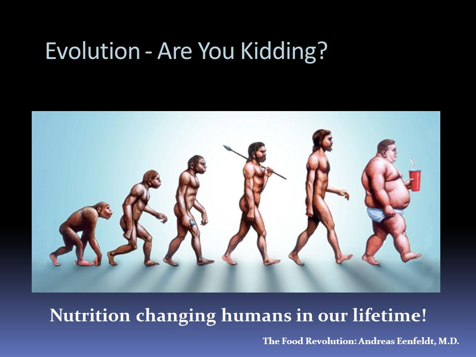 Evolution - Are You Kidding