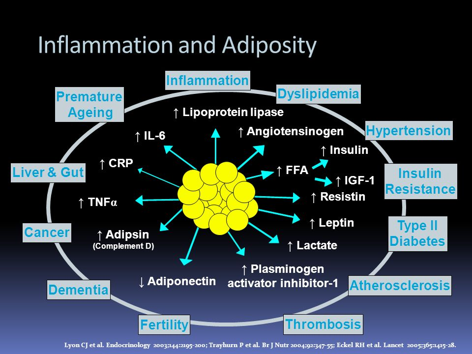 Inflammation and Adiposity